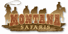 Montana Safaris